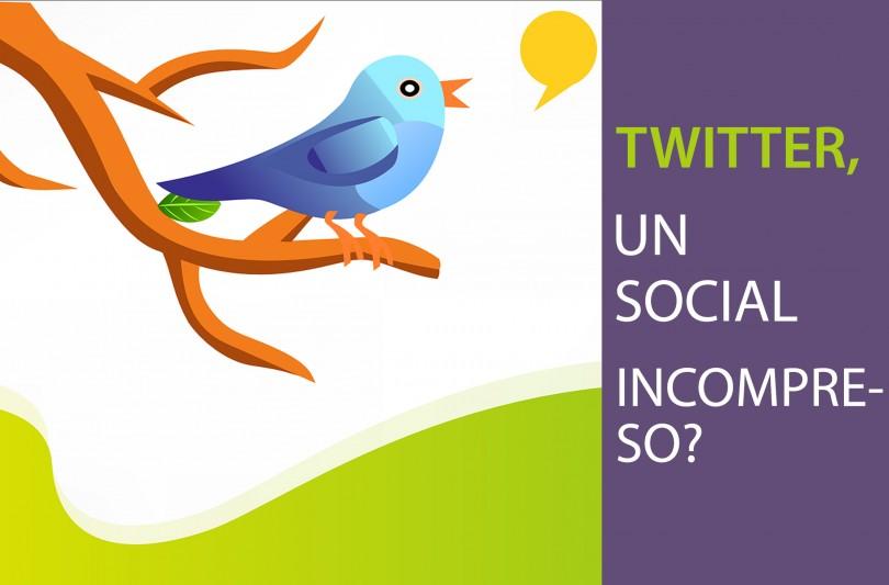Twitter, un Social incompreso?
